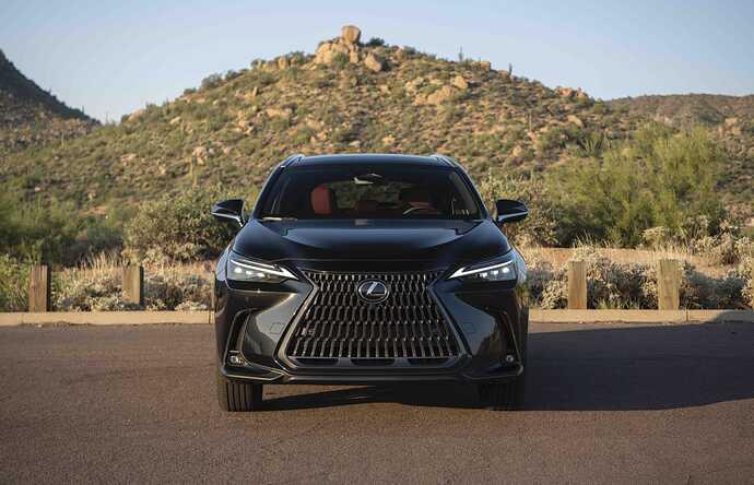 2022_Lexus_NX-350_Caviar_021