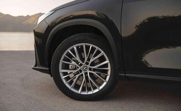 2022_Lexus_NX-350_Caviar_020